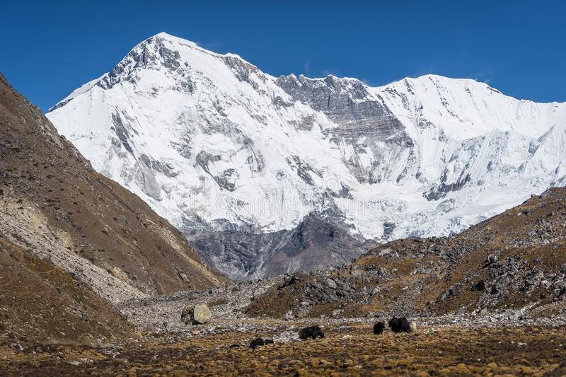 Mount Cho Oyu Expedition Cost